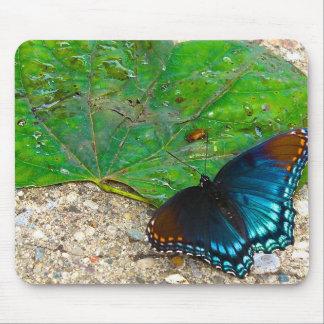 Schmetterlings-Erholungen auf Blatt Mauspad