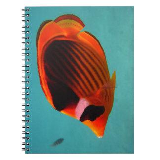 Schmetterlings-Fische Spiral Notizblock