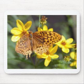 Schmetterlings-gelbes Blumen-Foto Mauspads