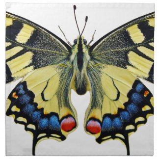 Schmetterlings-Insekten-Flügellepidoptera-Natur Stoffserviette