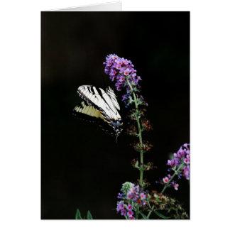 Schmetterlings-leere Anmerkungs-Karte Karte