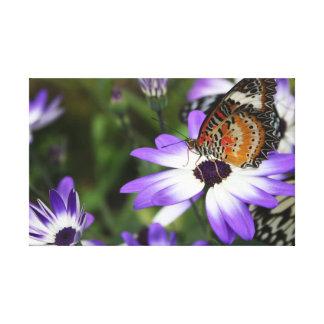 Schmetterlings-Leinwand Leinwanddruck