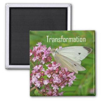Schmetterlings-Magnet, Umwandlung Quadratischer Magnet