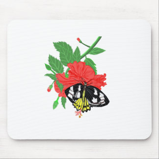 Schmetterlings-trinkender Nektar Mousepad