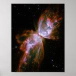 Schmetterlings-/Wanzen-Nebelfleck (Hubble Teleskop