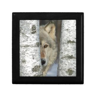 Schmuckkästchen mit pic des Wolfs in den Geschenkbox