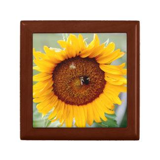 Schmuckkästchen-Sonnenblume-Entwurf Erinnerungskiste