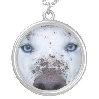 schmutziger Schlittenhund Versilberte Kette