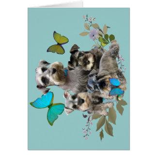 Schnauzer und Schmetterlingsgeschenke und -kleid Karte