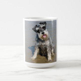 Schnauzerminiaturhundeniedliches Foto am Strand Kaffeetasse
