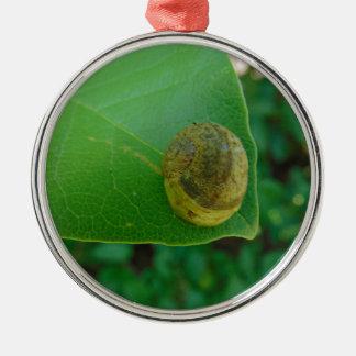 Schnecke auf einem Magnolienblatt Silbernes Ornament
