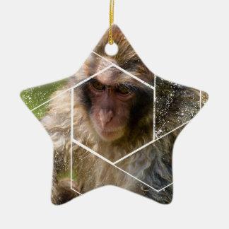 Schnee-Affe Keramik Stern-Ornament