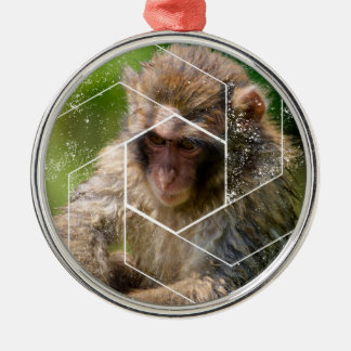 Schnee-Affe Silbernes Ornament