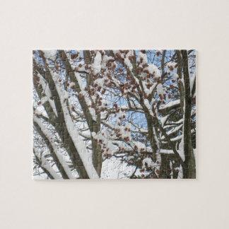 Schnee auf einem japanischen Ahorn --- Puzzle