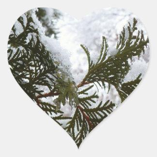 Schnee auf Immergrün verzweigt sich Herz-Aufkleber