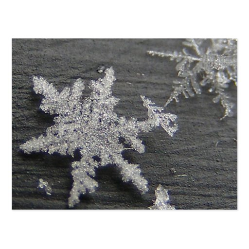 Schnee-Flocke 45 ~ Postkarte