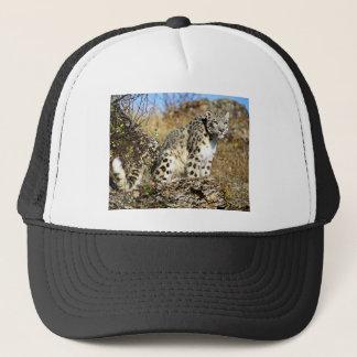 Schnee-Leopard auf dem Ausblick Truckerkappe