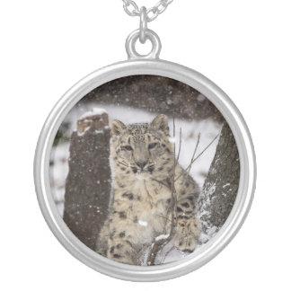 Schnee-Leopard CUB Halskette Mit Rundem Anhänger