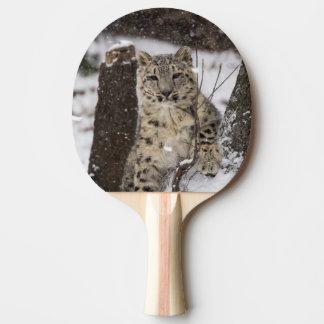 Schnee-Leopard CUB Tischtennis Schläger