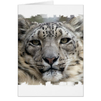 Schnee-Leopard-Gruß-Karte Karte