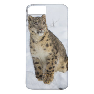 Schnee-Leopard iPhone 8 Plus/7 Plus Hülle