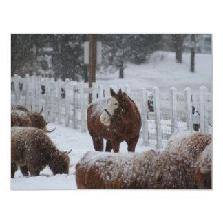 Schnee-Pferd, frohe Weihnachten! 10,8 X 14 Cm Einladungskarte