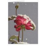 Schnee-Rose - Rote Rose mit Schneabdeckung Grußkarte