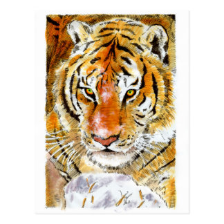 Schnee-Tiger-Postkarte Postkarte