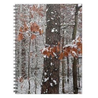 Schnee umfaßte Eichen-Winter-Natur-Fotografie Notizblock