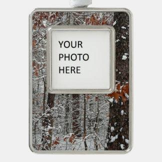 Schnee umfaßte Eichen-Winter-Natur-Fotografie Rahmen-Ornament Silber