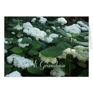 Schneeball Bush für Großmutter-Gerade weil Karte
