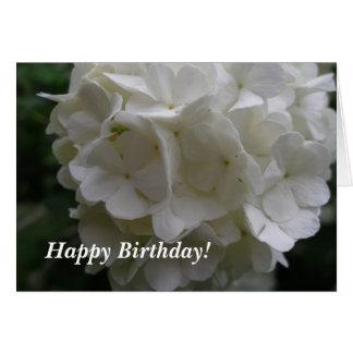 Schneeball-Bush-Geburtstag Karte