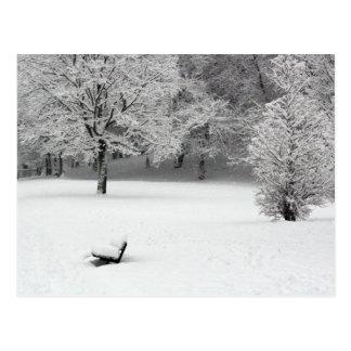 Schneebank und -bäume postkarte