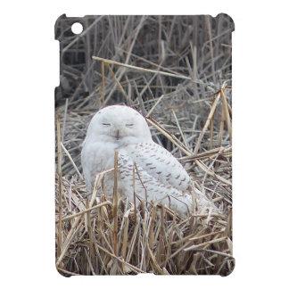 schneebedeckte Eule Hülle Für iPad Mini