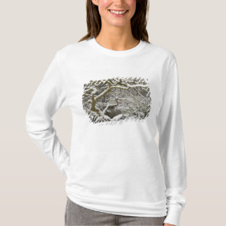 Schneebedeckter japanischer Ahorn 2 T-Shirt