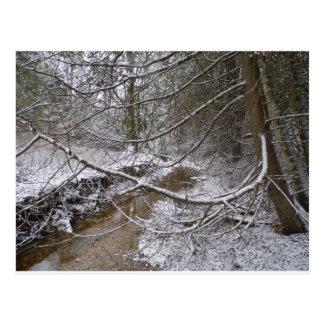 schneebedeckter Nebenfluss Postkarte