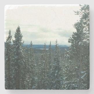 Schneebedecktes Kiefern Weihnachten in Yellowstone Steinuntersetzer