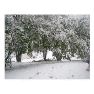 Schneefälle 1 postkarte