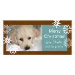 Schneeflocke-HundeweihnachtsFoto kardiert Brown-Bl Photokartenvorlagen