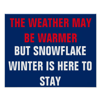 Schneeflocke-Winter ist widerstehen hier Poster