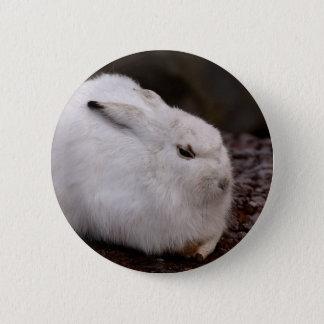 Schneehase niedlicher Zoo-Tiertierweltpelz-Hasen Runder Button 5,1 Cm