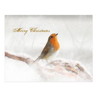 Schneeschauer Robin Redbreast Postkarte