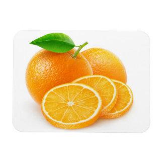 Schneiden Sie Orangen Magnet