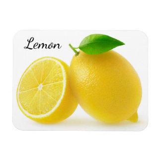 Schneiden Sie Zitronen Magnet