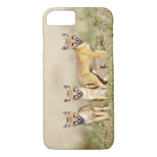 Schnelle Junge Fox (Vulpes Macrotis) an der Höhle iPhone 8/7 Hülle