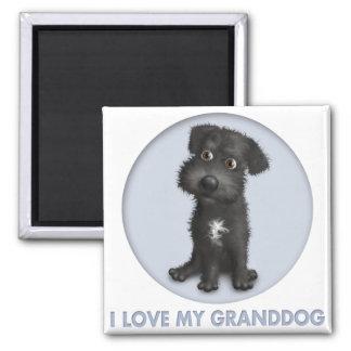 Schnoodle (schwarzes) Granddog Quadratischer Magnet