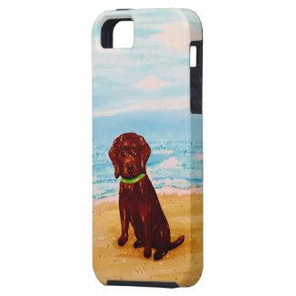 Schokoladen-Labrador am Strand iPhone 5 Schutzhülle