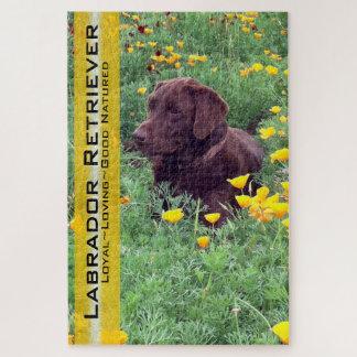 Schokoladen-Labrador im Puzzle