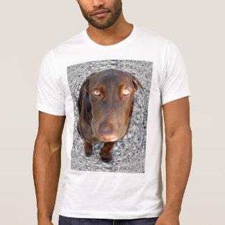 Schokoladen-Labrador-Liebe T-Shirt