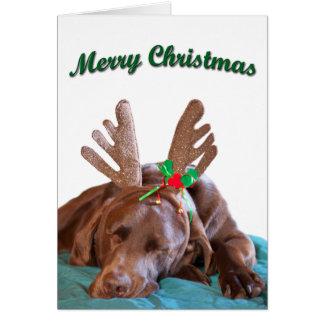 Schokoladen-Labrador-tragende Geweih-Fotografie Karte